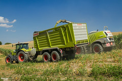 Corn Silage 2018 | CLAAS (martin_king.photo) Tags: mais corn cornsilage maisfeber 2018harvestseason summerwork powerfull martin king photo machines strong agricultural greatday great czechrepublic welovefarming agriculturalmachinery farm workday working modernagriculture landwirtschaft martinkingphoto machine machinery field huge big sky agriculture tschechische republik power dynastyphotography lukaskralphotocz day fans work place harvester forage clouds claas claasjaguar inaction action worker eos new weather flickr onwheels maize axion claascargos8400 claascargos cargos