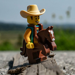 asphalt cowboy (genelabo) Tags: fahrrad tour bike bicycle bodensee benediktbeuern sony 35mm cowboy lego minifigure minifig grass pferd asphalt square toy quadrat gaul murnauermoos