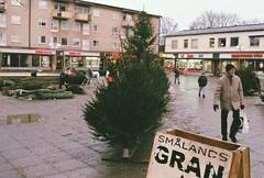 Julgransförsäljning på Lagaplan