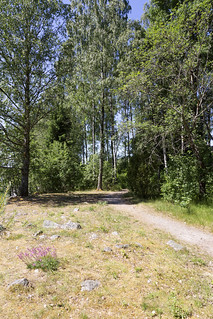 Ågårdselva 3.3, Solli, Norway