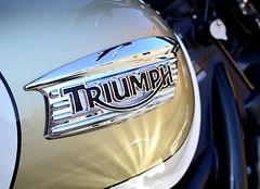 Triumph (pjpink) Tags: urban scottsaddition rva richmond virginia august 2018 summer pjpink 2catswithcameras