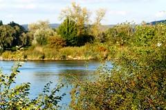 Es wird langsam Herbstlich (johannroehrle) Tags: natur nature natura niebo donau danube donarea dunaj automne autumn autunno a58 sony herbst himmel wolken wasser water river kreuzhof