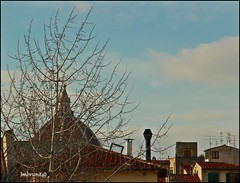i tetti di sant'ambrogio (imma.brunetti) Tags: firenze italia toscana rami cielo nuvole mercato santambrogio cupola comignoli edifici tetti centro
