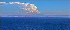 La Sardaigne vue des falaises de Bonifacio (Steff Photographie) Tags: sardaigne sea corse bonifacio italie nature bleu cote ile