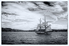 Lady Washington (cristian_jordache) Tags: lady washington sailboat tallship sails ocean puget sound seattle capitain portrait seaman historical replica