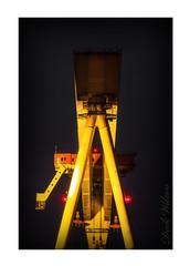 Inbetween Goliath (Deek Wilson) Tags: belfastshipyard harlandandwolff hw gantrycrane belfastgiants landmark crane queensisland nightshoot afterdark night northernireland belfast
