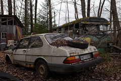 900 (mariburg) Tags: rotten marode ruin decay desolate derelict cars rustycars auto canoneos6d sigma35mm14dghsmart saab