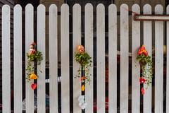 Bangkok – Decoration (Thomas Mülchi) Tags: 2018 bpg bangkok bangkokphotographersgroup photowalk thailand hirunroojicommunityphotowalk khlongsandistrict khlongsan bangkokmetropolitanregion th