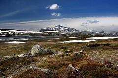 20180526-046P (m-klueber.de) Tags: 20180526046p 20180526 2018 mkbildkatalog nordeuropa skandinavien scandinavia schweden sweden sverige jämtland härjedalen helagsfjäll torkilstöten ljungdalen helags predikstolen sylarna sylen storsylen 20180526046f portfolio bildauswahl