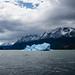 iceberg forecast