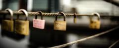 padlocks (ianmiddleton1) Tags: locks padlocks panorama dof shallowdof bokeh glasgow