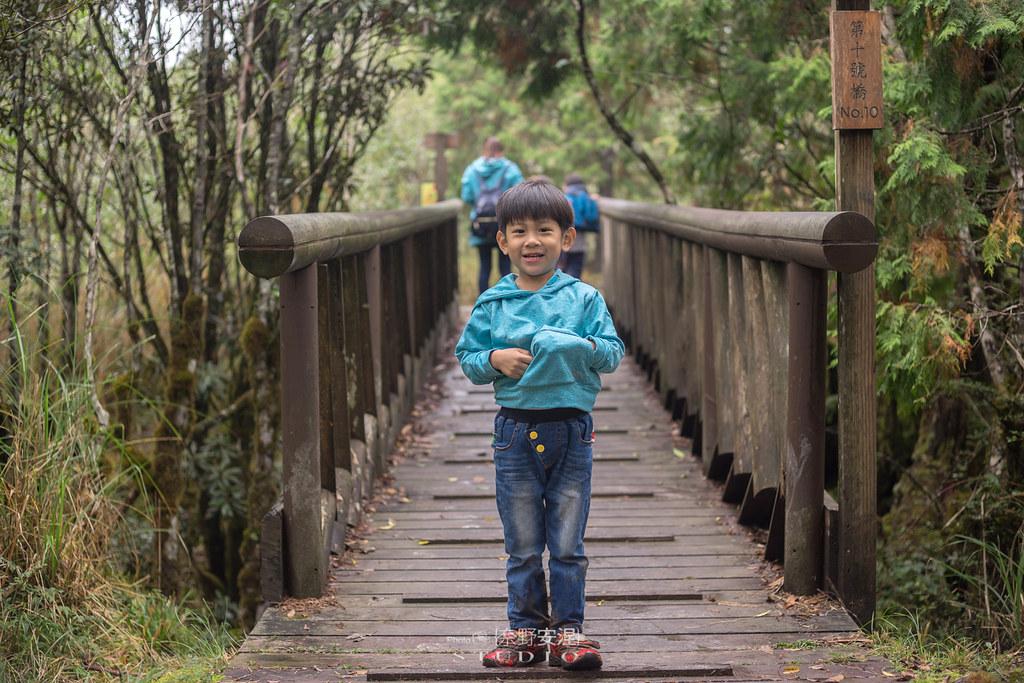 太平山翠峰湖環山步道 |走在泥濘的道路上,只為途中美景 | 宜蘭大同鄉42