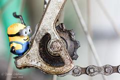 Spokes person (~ **Barbara ** ~) Tags: macromondays cog cogwheel bike minion bicycle wheel greacy small macro spokes garage rust unusedforawhile canon7dii