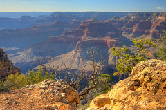 Livin' On The Edge 2018.06.06.17.12.01 (Jeff®) Tags: jeff® j3ffr3y copyright©byjeffreytaipale arizona grandcanyon nature nationalpark landscape landschaft unitedstates usa america outside outdoors mountains scenery scenic june 2018 summer frobulatingwidgets canttouchthis flickr americathebeautiful trip vacation summervacation travel holiday