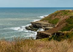 2018-07-10 Bemp&Filey-1460209.jpg (Hands in Focus) Tags: filey northyorkshire lumixfz1000 ocean coast