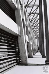 Stadium lines (mkarwowski) Tags: stadium lines blackandwhite monochrome analog rollfilm fomapan fomapan200 canon t70 canont70 tokina3570mmf35