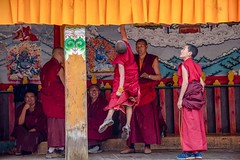 Fun Time (Rod Waddington) Tags: children china chinese tibetan yunnan monks monastery group buddhist shangrila indoor candid people painting painted