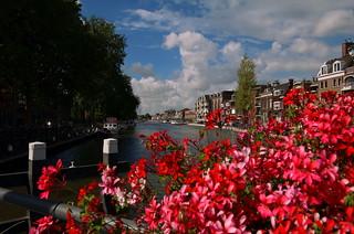 Holland in summer