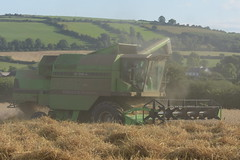 Deutz Fahr M36.10 Combine Harvester cutting Winter Wheat (Shane Casey CK25) Tags: deutz fahr m3610 combine harvester cutting winter wheat sdf df green samedeutzfahr deutzfahr castlelyons grain harvest grain2018 grain18 harvest2018 harvest18 corn2018 corn crop tillage crops cereal cereals golden straw dust chaff county cork ireland irish farm farmer farming agri agriculture contractor field ground soil earth work working horse power horsepower hp pull pulling cut knife blade blades machine machinery collect collecting mähdrescher cosechadora moissonneusebatteuse kombajny zbożowe kombajn maaidorser mietitrebbia nikon d7200