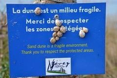 Fragile environment (Jeanne Menjoulet) Tags: bretagne nevez brittany france snails dune fragile environment environnement protectedarea zoneprotégée