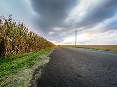 Evening on 2400N (mjhedge) Tags: farm country road sky corn cornfield rural illinois fisheye autumn fall evening sunset cloudy clouds olympus oly getolympus em1mkiiomdem1markii omdem1mkii omd 8mmf18 8mmf18fisheye 8mm