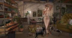 no.. not for you Redeux Photo Contest August/2018 Entry #1 NicandraLaval1 (nicandralaval1) Tags: redeux enfantterrible lelutka maitreya 7deadlyskins luas noir olive scarletcreative collabor88 kalopsia tiar chimia beedesigns serendipity poses decor decorate {whatnext} lacrimedellanima dustbunny jian gacha zerkalo focusposes theloftaria boomerang soy bazar mec ernsthaeckel imeka keke circa tentacio applefall pixelmode unkindness subdom princefrog enchantment {vespertine} tropiclglamgacha fiftylindenfriday mesh freebies gift hair luckyboards tlc cherryhouse