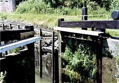 Garston Lock, No 102. (Chris the coal.) Tags: garston hydraulic weeds gates lock river kennet