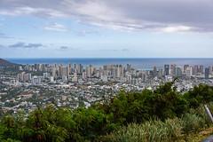 _DSC0650 (camlaque) Tags: 2018 hawai voyage