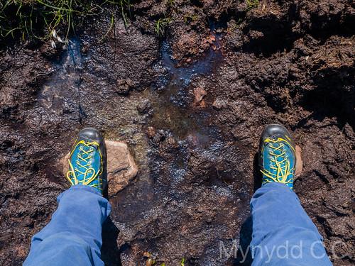 David K taking a Scottish _footfie_ 1