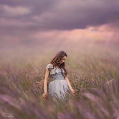 Spring Dreams ({jessica drossin}) Tags: jessicadrossin portrait field dream sky woman dress long hair wwwjessicadrossincom