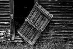 """Jimi Hendrix played here (hutchphotography2020) Tags: blownoffdoor barnwood rottenwood ruralbarn nikon """"nikonflickraward"""""""