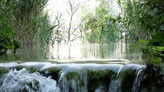 DSCF8375 (rmassart) Tags: m08 y2018 croatia plitvicka jezera plitvickajezera plitvichka lakes