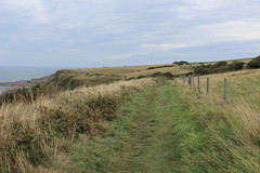 Cleveland Way heading East towards Kettleness (Walruscharmer) Tags: clifftop fencing publicfootpath nationaltrail clevelandway e2europeanlongdistancefootpath northseatrail englandcoastpath northyorkmoors nationalpark northyorkshire england yorkshire
