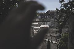 (robertosanchezsantos) Tags: saintémilion francia france europa europe ciudad city clouds nubes viaje travel colores colors cielo sky viñedo uva díptico grape vineyard verde green bosque árbol hierba jardín architecture arquitectura edificio