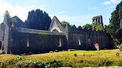 Ruins of Malahide Abbey (Raúl Alejandro Rodríguez) Tags: ruinas ruins abadía abbey árboles trees cementerio cemetery tumbas graves graveyard malahide irlanda ireland