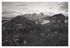 (2018) (phamnes) Tags: landscape 135film 35mm blackandwhitefilm cokinfilters sunset austbø slr xtol epsonv600 rolleisuperpan superpan200 nikonf301 nikon