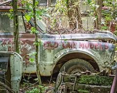 Old Car City 126 (augphoto) Tags: augphotoimagery abandoned decay old texture truck vehicle weathered white georgia unitedstates
