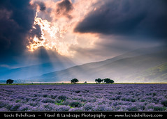Bulgaria - Lavender fields in full bloom at Sunset (© Lucie Debelkova / www.luciedebelkova.com) Tags: lavender lavenderfields rosevalley bulgaria bulgarian българия bălgaria republicofbulgaria републикабългария country europe southeasterneurope easterneurope balkans landscape nature natuur natureza paysage paisaje paisagem paesaggio landschaft scenery scenic overlook outlook world exploration trip vacation holiday place destination location journey tour touring tourism tourist travel traveling visit visiting wonderful fantastic awesome stunning beautiful breathtaking incredible lovely nice sight sightseeing wwwluciedebelkovacom luciedebelkova