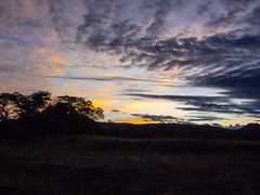 late afternoon light over the plains (odileva) Tags: sunset paysage june kenia masaimaranp nature transmara riftvalleyprovince kenya ke