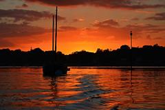 soleil rouge, le relecq-kerhuon - backlight série - 1 (eric-foto) Tags: littoral radedebrest brest lerelecqkerhuon mer sea reflets bretagne breizh brittany bzh finistère nikond800 pennarbed bateau crépuscule