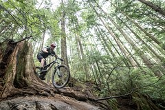 """2018 Fromme Fondo 29 (Jeremy J Saunders) Tags: fromme mountain bike fondo 2018 nikon """"jeremy j saunders"""" jjs north shore vancouver bc british columbia sport forest nsmba"""
