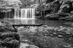 sgwd Ddwli Uchaf waterfall. (andyp178) Tags: bw mono monochrome waterfall water river longexposure rocks stream wood trees log falls breconbeacons wales waterfallcountry nikon tokina