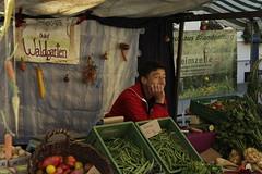 """Markt der regionalen Möglichkeiten • <a style=""""font-size:0.8em;"""" href=""""http://www.flickr.com/photos/130033842@N04/43707997545/"""" target=""""_blank"""">View on Flickr</a>"""