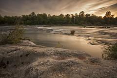 Am Rhein (Adam_G.) Tags: rhein altrhein wasser wald felsen langzeitbelichtung natur sonnenuntergang abendstimmung