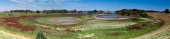 Rings of colour (cluffie598) Tags: kaliwaal waal river pond lake nijmegen kekerdom ring polder nederland netherlands gelderland