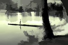 lonely bird (larrynunziato) Tags: landscape digitallandscape pond digitalpainting mixedmedia blueheron coartists hudsonvalley845
