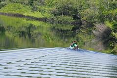 Amazon School Run (tim ellis) Tags: holiday amazon iracema rionegro boat canoe manaus brazil