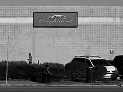 Greyhound Station (pjpink) Tags: blackandwhite bw monochrome northside rva richmond virginia august 2018 summer pjpink 2catswithcameras urban