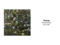 """Pinetop • <a style=""""font-size:0.8em;"""" href=""""https://www.flickr.com/photos/124378531@N04/43895009215/"""" target=""""_blank"""">View on Flickr</a>"""
