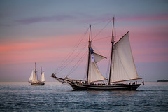 Traditionelle Segler (Petra Runge) Tags: sailingships sunset sea water sailing